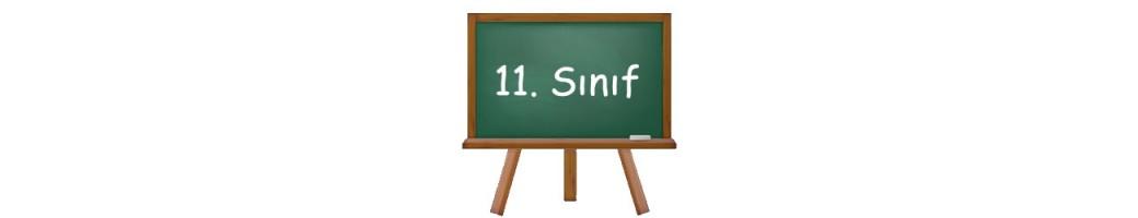 11.Sınıf